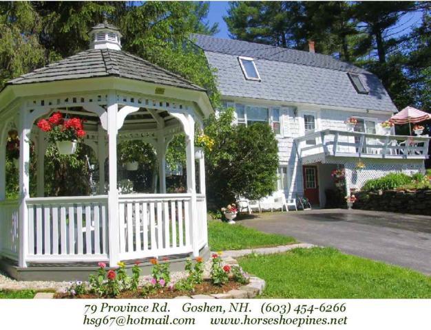79 Province Road, Goshen, NH 03752 (MLS #4727699) :: Lajoie Home Team at Keller Williams Realty