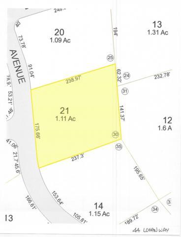 44 Logan Way, Ossipee, NH 03890 (MLS #4730218) :: Keller Williams Coastal Realty