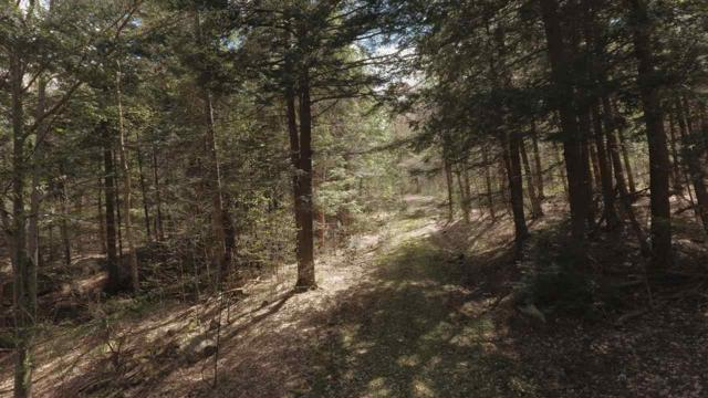 Lot 4 Stratton Arlington Road, Stratton, VT 05360 (MLS #4732293) :: Keller Williams Coastal Realty
