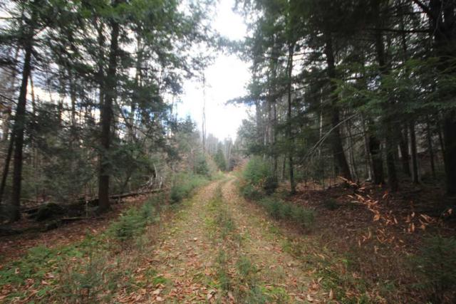 Lot A Stratton Arlington Road, Stratton, VT 05360 (MLS #4732295) :: Keller Williams Coastal Realty