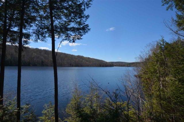 31 Pleasant Drive, Grantham, NH 03753 (MLS #4739728) :: Hergenrother Realty Group Vermont