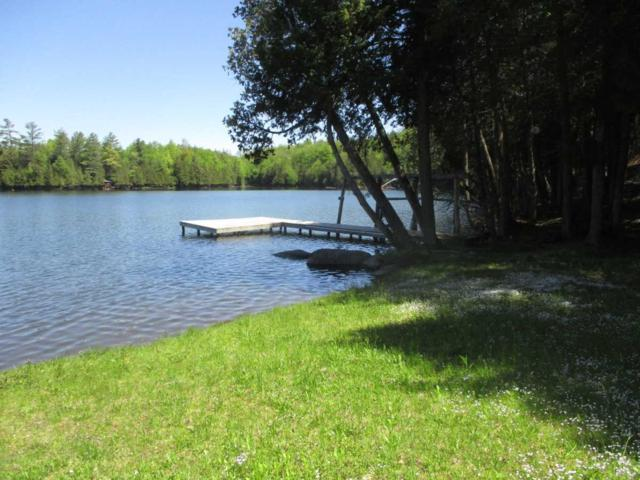 000 Lost Nation Road, Albany, VT 05820 (MLS #4757508) :: Hergenrother Realty Group Vermont