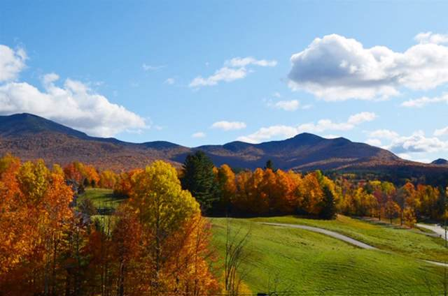 10 Shepherd's Way #1, Underhill, VT 05489 (MLS #4761068) :: The Gardner Group