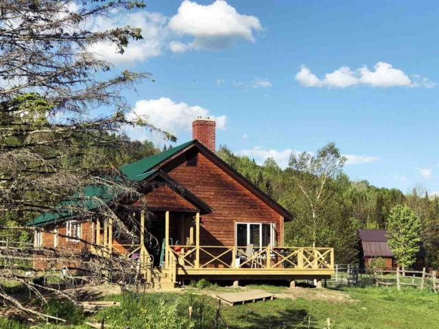 1126 Lakeview Road, Westmore, VT 05822 (MLS #4769177) :: Hergenrother Realty Group Vermont