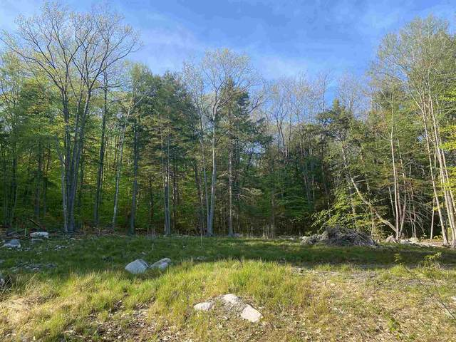11 Blinden Drive, Madison, NH 03849 (MLS #4801004) :: Hergenrother Realty Group Vermont