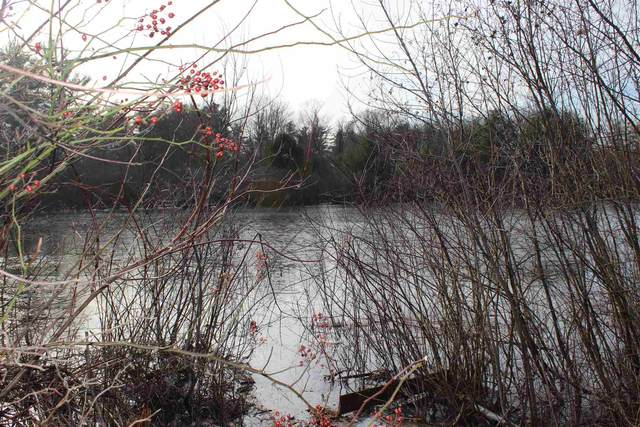 57 Exeter Road, Kingston, NH 03848 (MLS #4803372) :: Signature Properties of Vermont