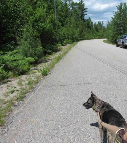 1 Hawthorne Road, Ossipee, NH 03864 (MLS #4810375) :: Signature Properties of Vermont