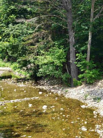 0 Beaver Pond Road, Groton, NH 03241 (MLS #4819422) :: Parrott Realty Group