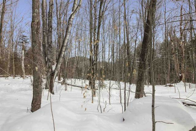 Lot N-5 Alden Drive, Campton, NH 03264 (MLS #4822006) :: Team Tringali