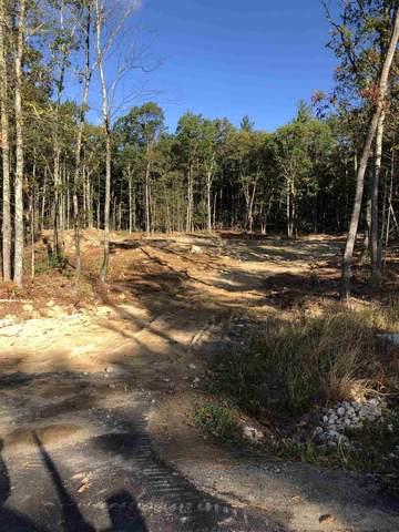 20 Whitetail Ridge, Merrimack, NH 03054 (MLS #4829281) :: Jim Knowlton Home Team