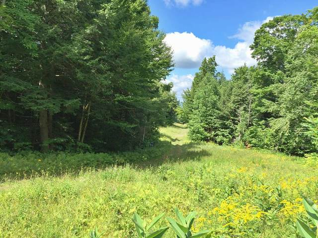 24 Bow Hill Road #24, Burke, VT 05832 (MLS #4838387) :: Signature Properties of Vermont