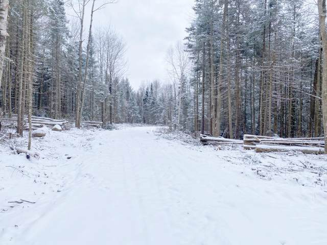 Youngs Road #38, East Haven, VT 05837 (MLS #4840067) :: The Gardner Group