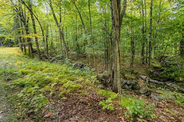 Lot 5 North Wilmot Road, Wilmot, NH 03287 (MLS #4841804) :: Signature Properties of Vermont