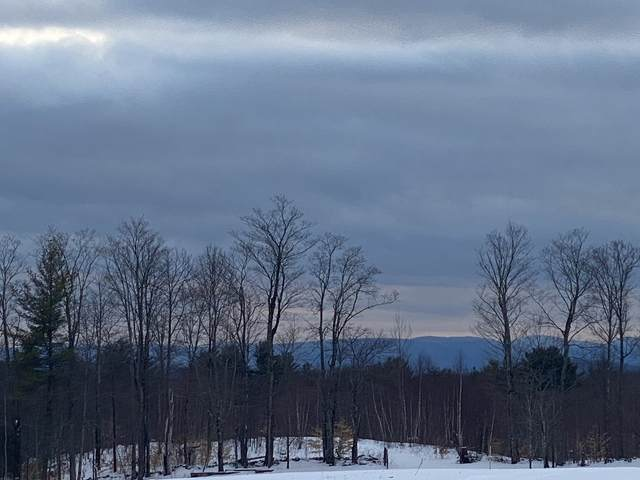 469-1 South Road Lot 1, Sullivan, NH 03445 (MLS #4846586) :: Signature Properties of Vermont