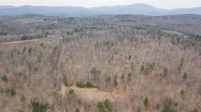 00 North County Road, Groton, VT 05046 (MLS #4857333) :: Parrott Realty Group