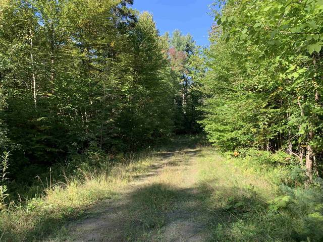 00 High Meadows Road #20, Burke, VT 05832 (MLS #4882439) :: Signature Properties of Vermont