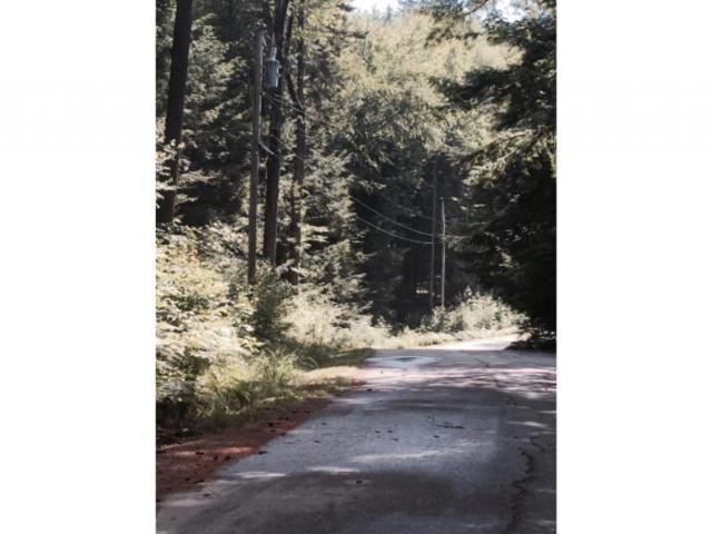 0 Tree Line Road, Thornton, NH 03285 (MLS #4442367) :: Keller Williams Coastal Realty