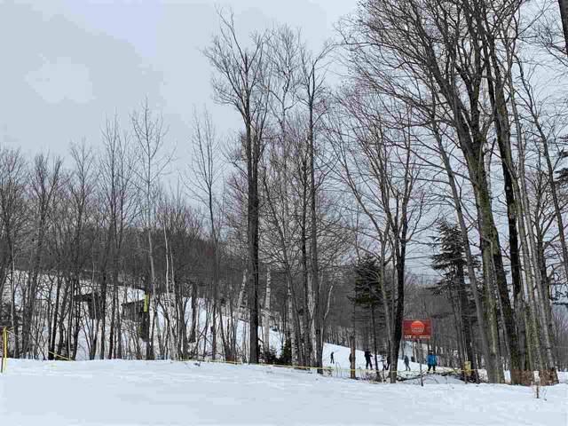 11 Sundance Village Loop, Dover, VT 05356 (MLS #4500049) :: Signature Properties of Vermont
