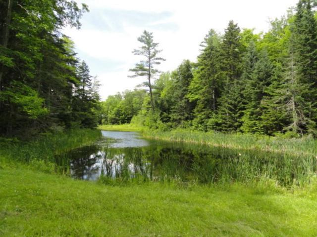 E 5A Loon Circle, Londonderry, VT 05148 (MLS #4508807) :: The Hammond Team