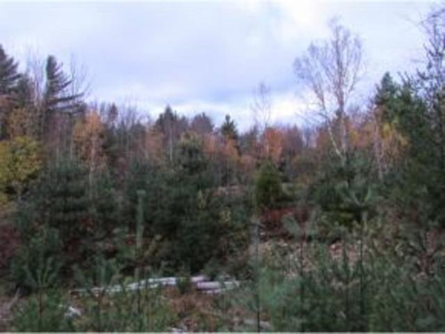 0 Vt Route 128, Westford, VT 05494 (MLS #4511323) :: The Gardner Group
