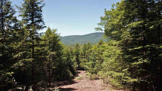 Lot 15-K Buzzell Ridge Road Aka Lot 10 On P, Sandwich, NH 03227 (MLS #4614295) :: The Hammond Team