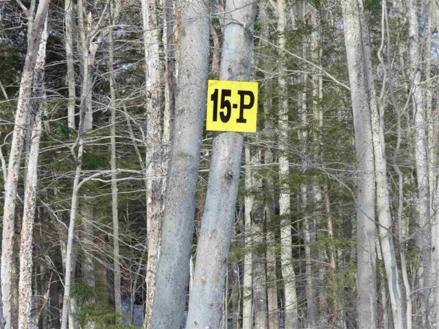 15 P Buzzell Ridge Road #12 Lot 15.P, Sandwich, NH 03227 (MLS #4614330) :: The Hammond Team