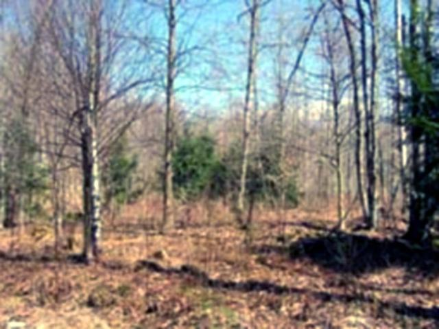 Lot 2-T Brookview Lane, Wolcott, VT 05680 (MLS #4623214) :: The Hammond Team