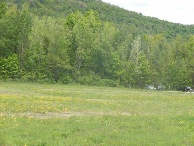 Lot 2A Log Yard Drive 2A, Hardwick, VT 05843 (MLS #4629356) :: The Hammond Team