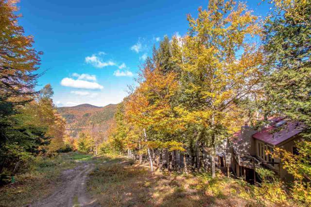 15 Cathedral Trail, Bartlett, NH 03812 (MLS #4715875) :: The Hammond Team