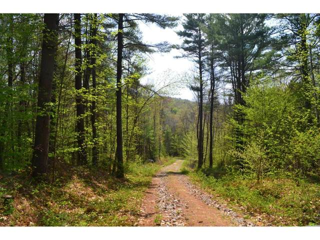 210 Windsor Road, Hillsborough, NH 03244 (MLS #4731183) :: Signature Properties of Vermont