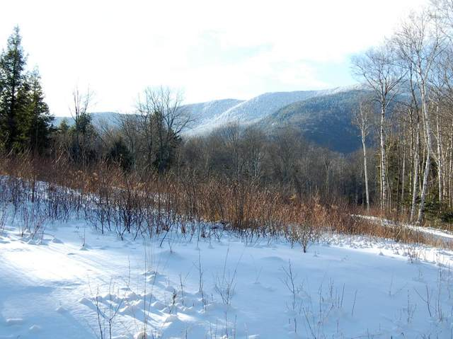 00 Slide Brook Drive Lots 1 To 4, Fayston, VT 05673 (MLS #4789782) :: Signature Properties of Vermont