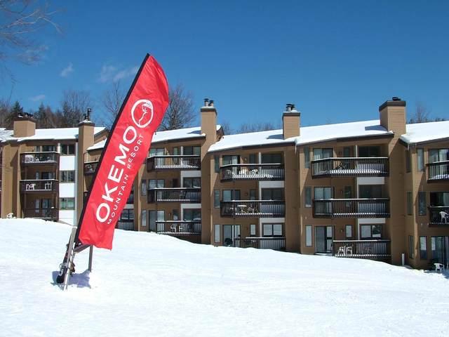 109 Okemo Ridge Road C106, Ludlow, VT 05149 (MLS #4791198) :: Signature Properties of Vermont
