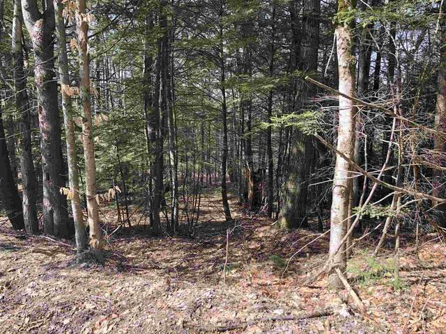 23 Mt Shaw Road #023, Ossipee, NH 03864 (MLS #4801009) :: Lajoie Home Team at Keller Williams Gateway Realty
