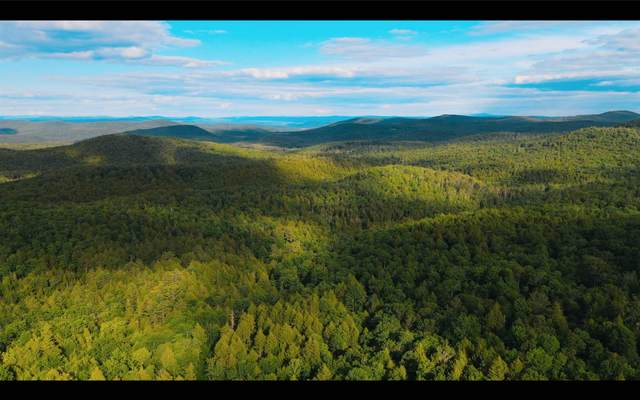 141 Stage Road, Chester, VT 05143 (MLS #4822981) :: The Gardner Group