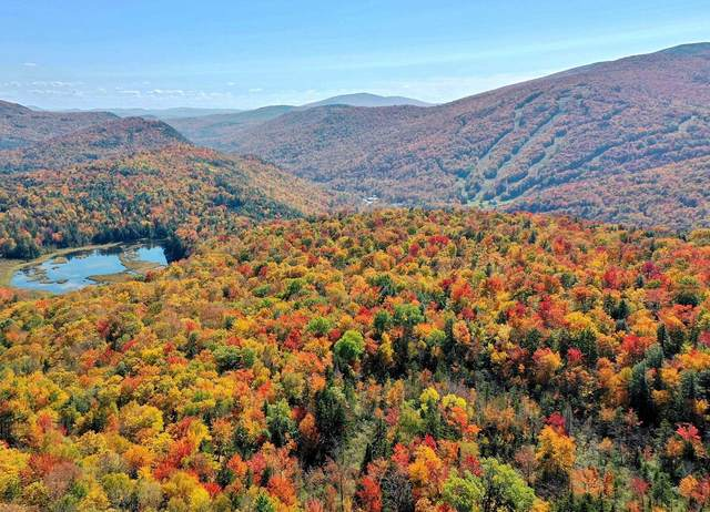 Lot 2 Grandview Lodge Road, Plymouth, VT 05056 (MLS #4869225) :: Signature Properties of Vermont