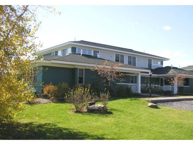 201 Stoweflake Meadows Loop 648/649, Stowe, VT 05672 (MLS #4489839) :: The Gardner Group