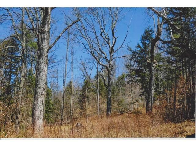 8 Gardiner Drive, Londonderry, VT 05148 (MLS #4508738) :: Signature Properties of Vermont