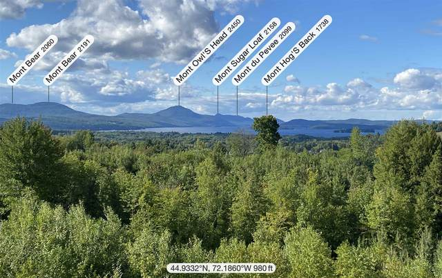 Lot F Pine Hill & Mt Vernon Road, Derby, VT 05829 (MLS #4681576) :: Signature Properties of Vermont