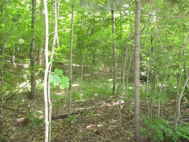 Lot 2 Brookview Lane, Wolcott, VT 05860 (MLS #4764452) :: Lajoie Home Team at Keller Williams Gateway Realty