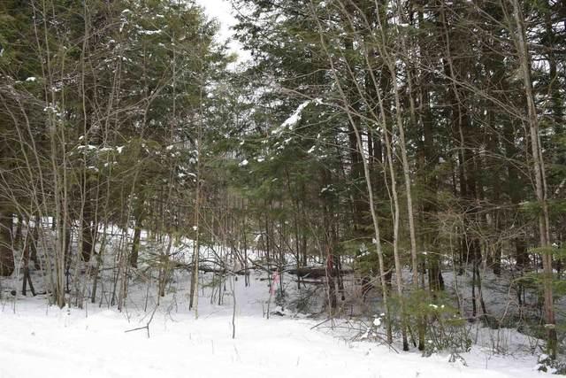 Lot 147 Carr Road #147, Haverhill, NH 03765 (MLS #4843244) :: Signature Properties of Vermont