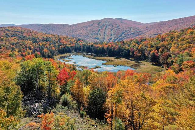 Lot 3 Grandview Lodge Road, Plymouth, VT 05056 (MLS #4869238) :: Signature Properties of Vermont