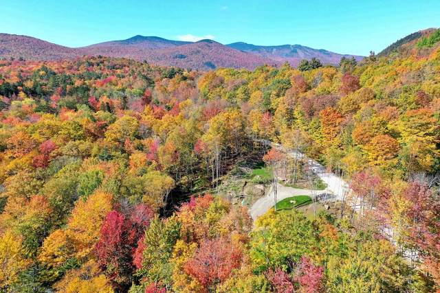 Lot 1 Grandview Lodge Road, Plymouth, VT 05056 (MLS #4869249) :: Signature Properties of Vermont