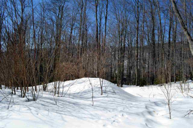 161 Wild Turkey Lane, Fayston, VT 05673 (MLS #4409842) :: Keller Williams Coastal Realty