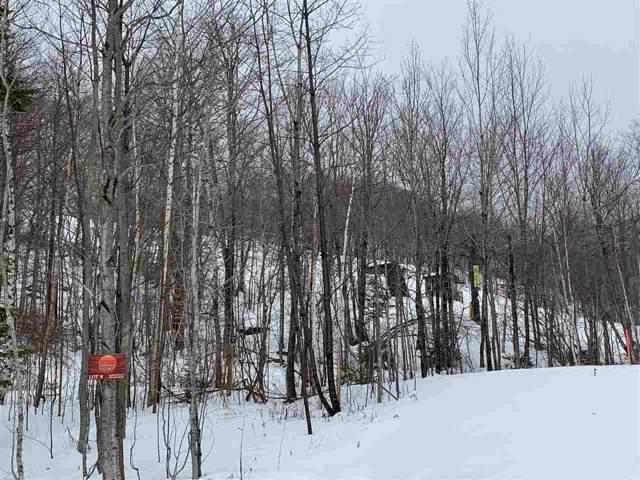 9 Sundance Village Loop, Dover, VT 05356 (MLS #4500048) :: Team Tringali