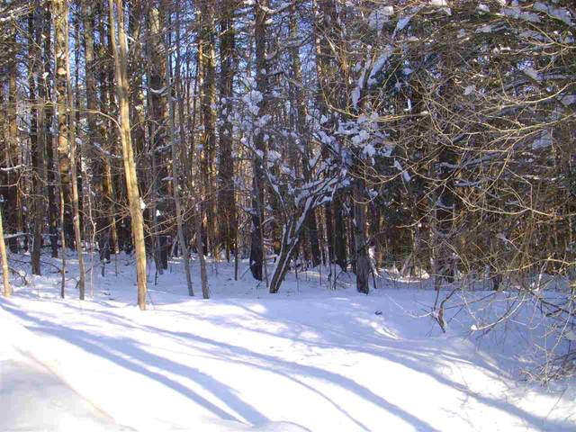 Lot 1 Bertha Springs Road, Waitsfield, VT 05673 (MLS #4401237) :: Signature Properties of Vermont