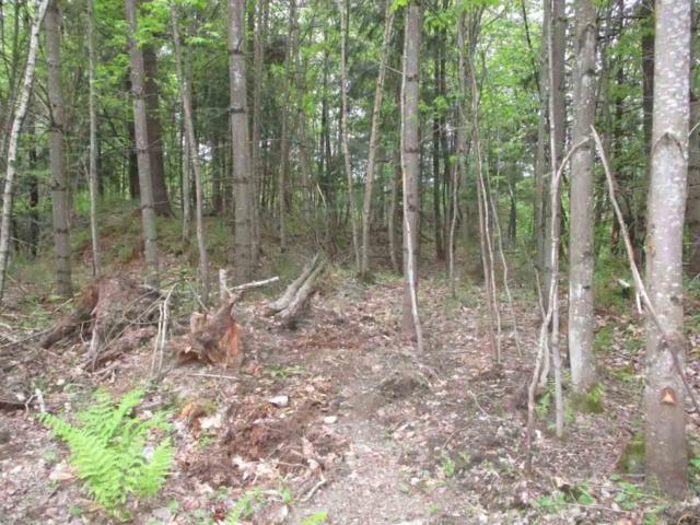 Lot 98 Crabapple Lane, Hyde Park, VT 05655 (MLS #4446338) :: Keller Williams Coastal Realty