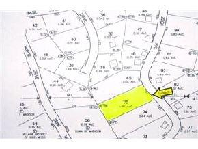 26 Oak Ridge  (Lot 75) Road, Madison, NH 03849 (MLS #269789) :: The Hammond Team