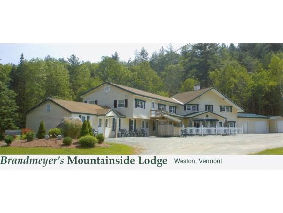 913 Route 100 Route, Weston, VT 05161 (MLS #4425423) :: The Gardner Group