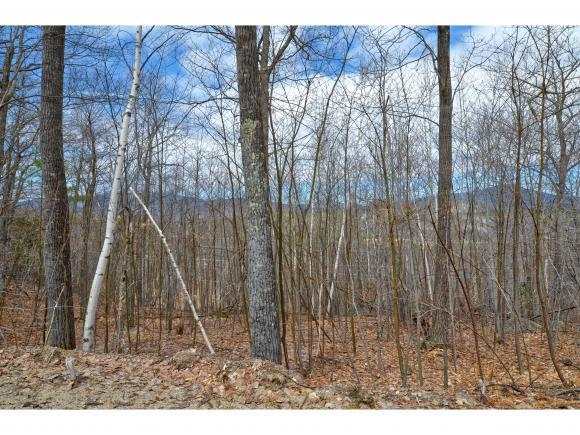 6 Forclaz Road, Madison, NH 03849 (MLS #4486581) :: The Hammond Team