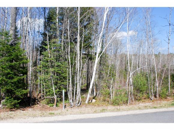 54 Grandview Road, Conway, NH 03818 (MLS #4488019) :: Signature Properties of Vermont